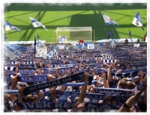 Behält seinen Job in der Veltins-Arena auf Schalke: S04-Coach Jens Keller (Foto: Bredehorn Jens  / pixelio.de)
